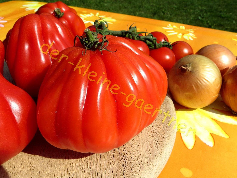 ochsenherz tomate coeur de boeuf 10 samen tomatensamen kaufen. Black Bedroom Furniture Sets. Home Design Ideas